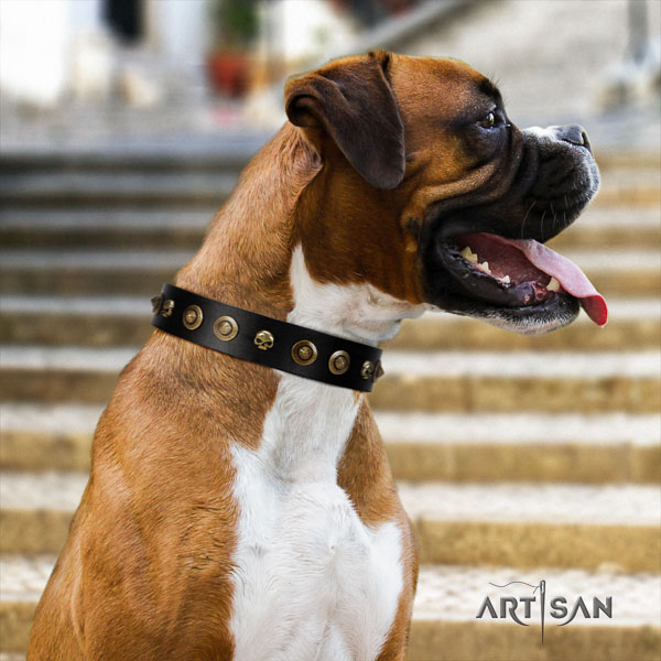 Boxer natural genuine leather collar with rust-proof buckle for comfy wearing