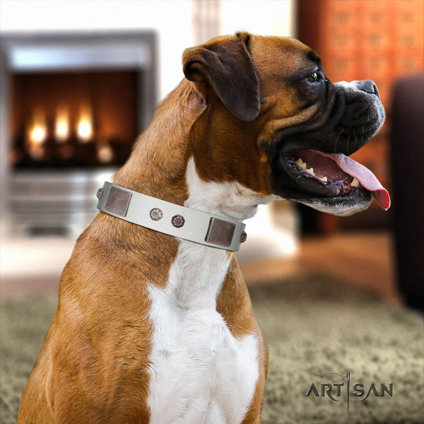 Boxer top quality genuine leather dog collar with adornments