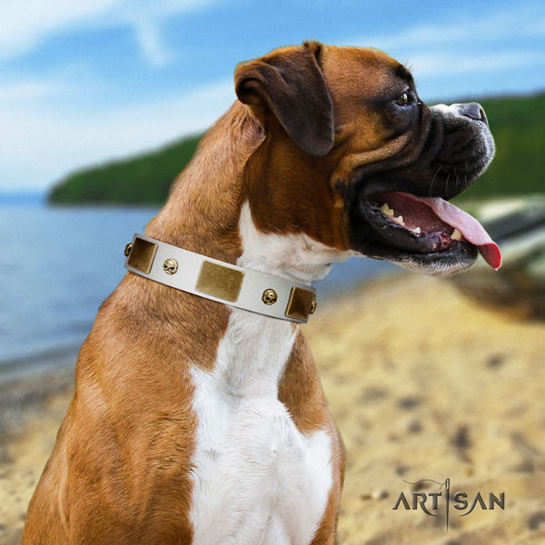 Boxer natural genuine leather collar with reliable traditional buckle for comfortable wearing