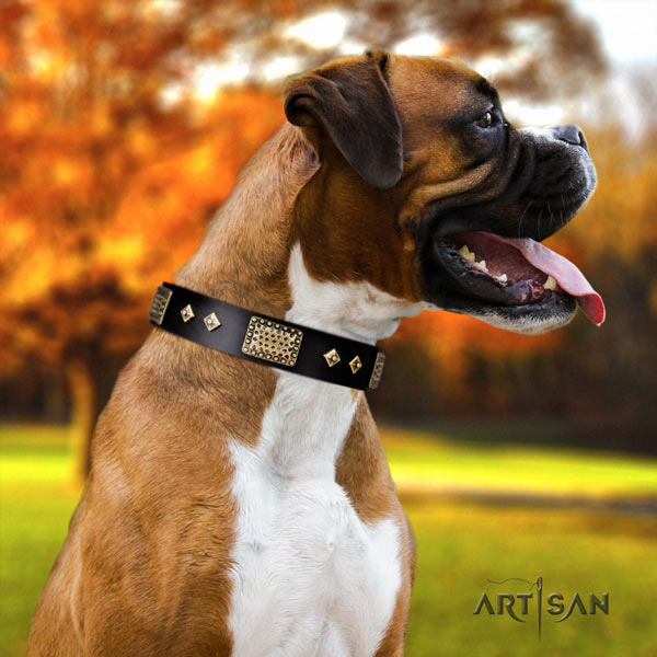 Boxer full grain genuine leather collar with rust resistant embellishments