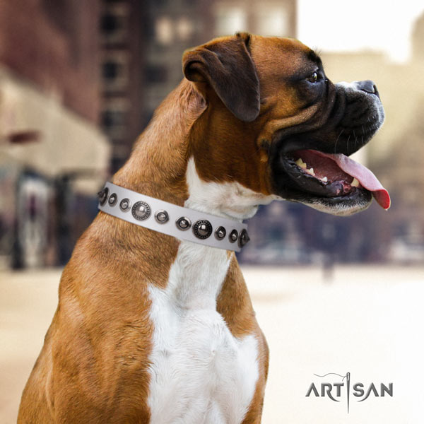 Boxer natural genuine leather collar with durable fittings