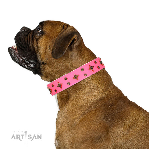Boxer top notch genuine leather dog collar for fancy walking