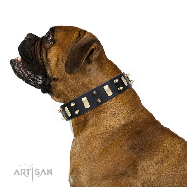 Boxer handmade full grain leather dog collar for handy use