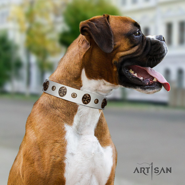 Boxer genuine leather collar with corrosion proof buckle for stylish walking