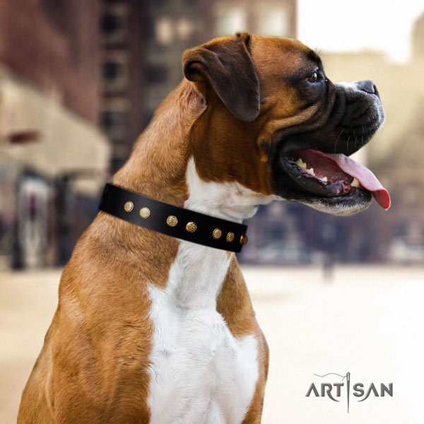 Boxer natural genuine leather collar with reliable D-ring