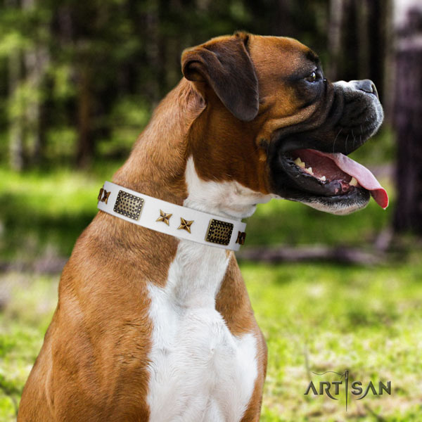 Boxer full grain leather collar with corrosion proof buckle