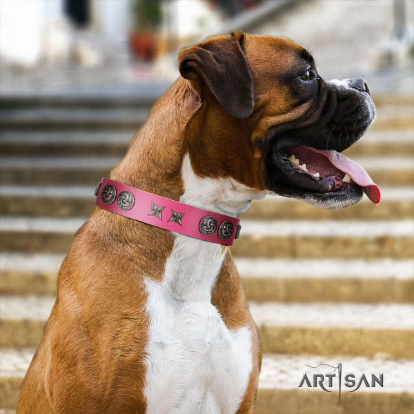 Boxer best quality genuine leather dog collar with studs