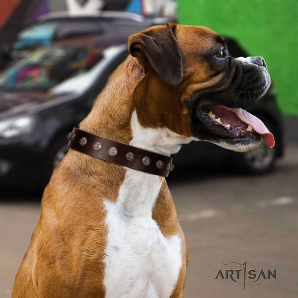 Boxer fine quality full grain leather dog collar with decorations