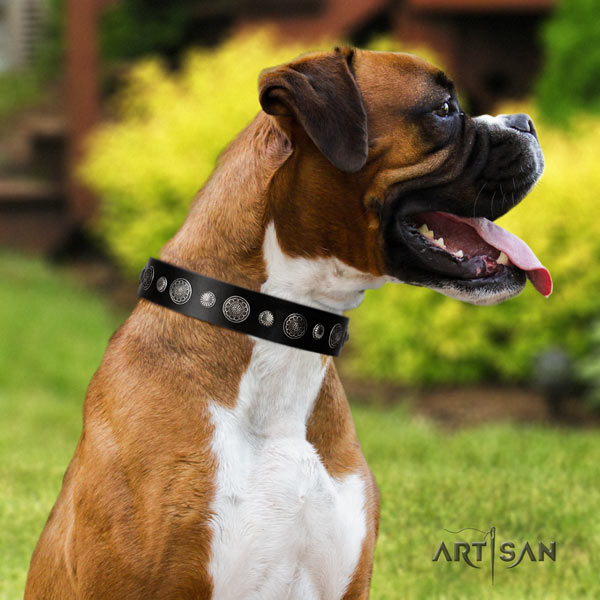 Boxer full grain leather collar with embellishments