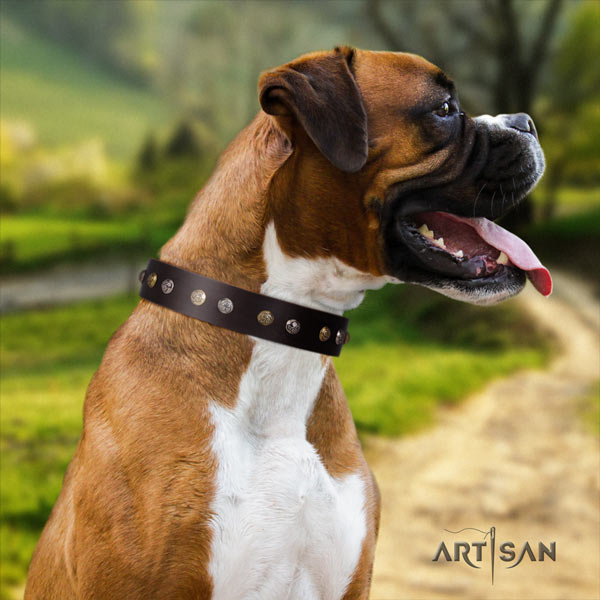 Boxer full grain natural leather collar with corrosion proof hardware