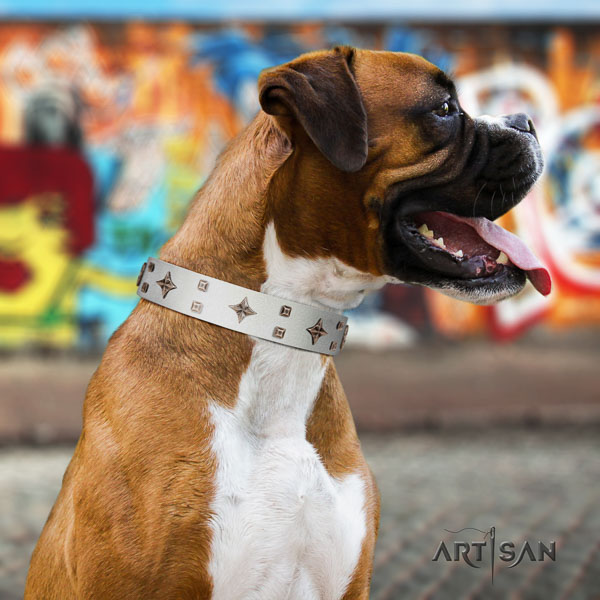 Boxer full grain genuine leather dog collar for daily walking