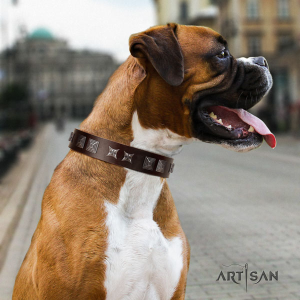 Boxer inimitable full grain leather dog collar with adornments