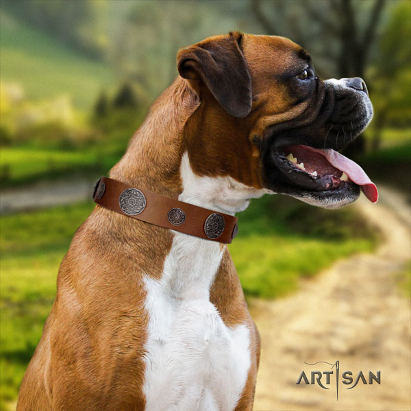 Boxer full grain natural leather dog collar for daily walking