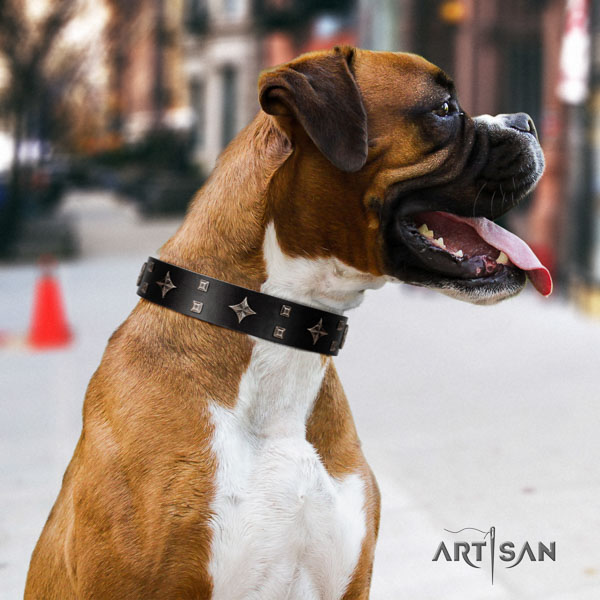 Boxer full grain genuine leather dog collar for stylish walking