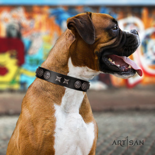Boxer awesome leather dog collar with embellishments
