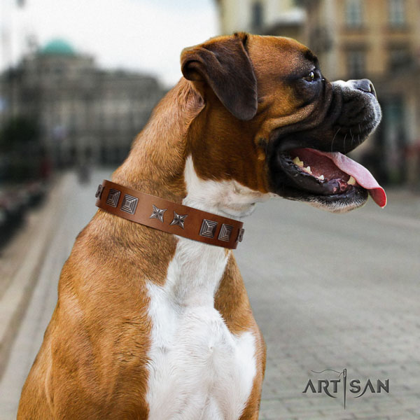 Boxer comfortable full grain genuine leather dog collar with adornments