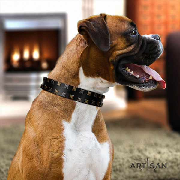 Boxer full grain leather collar with durable D-ring for fancy walking