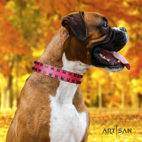 Boxer genuine leather collar with durable traditional buckle for handy use