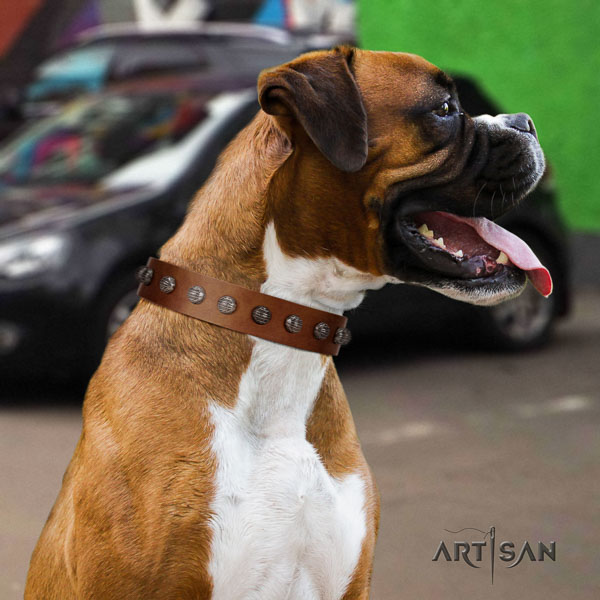 Boxer top quality natural genuine leather dog collar with embellishments