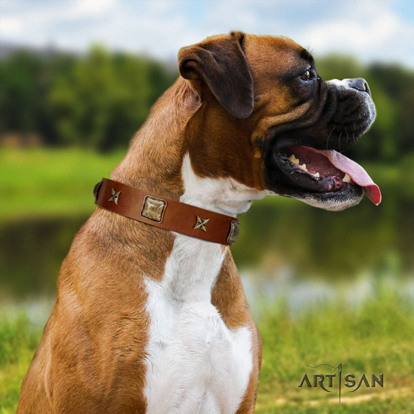 Boxer full grain leather collar with reliable D-ring for comfy wearing