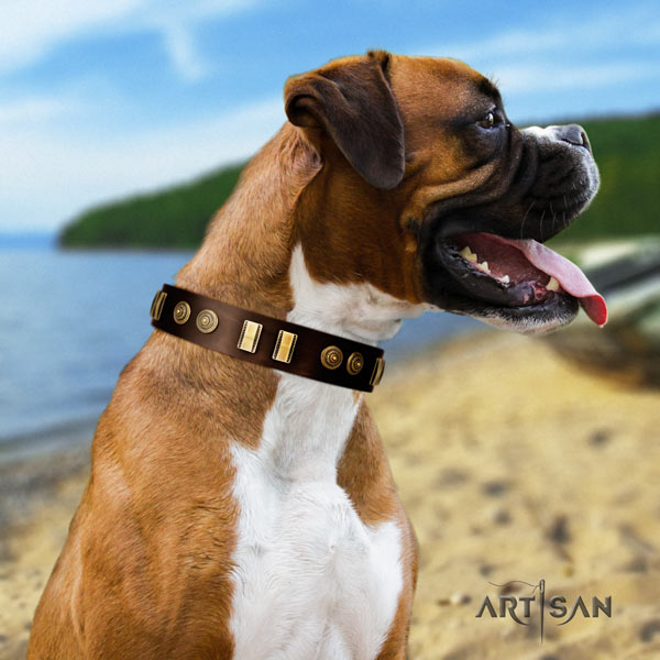 Boxer collar with embellishments