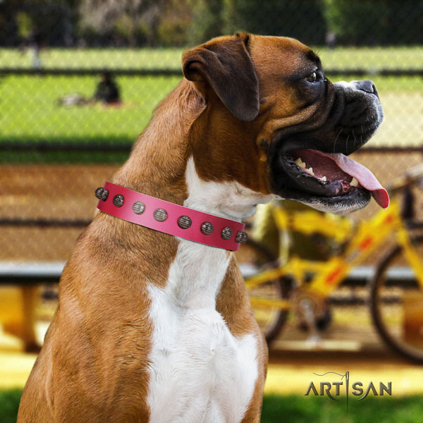 Boxer fine quality natural genuine leather dog collar with embellishments