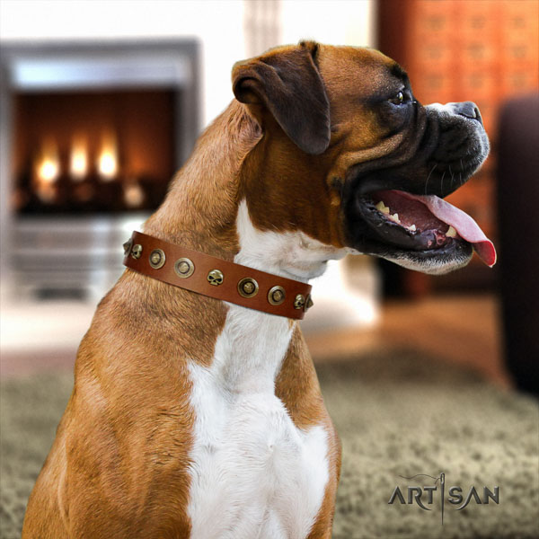 Boxer natural genuine leather collar with rust resistant traditional buckle for easy wearing
