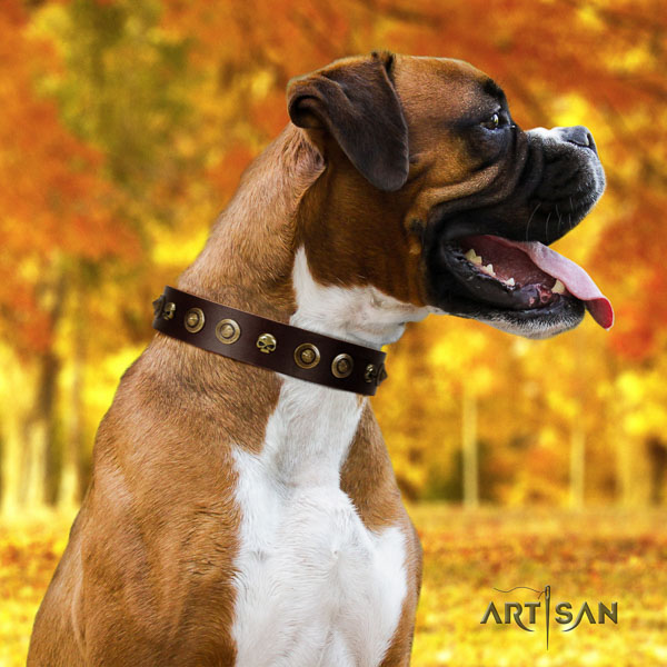 Boxer full grain genuine leather collar with durable buckle for fancy walking