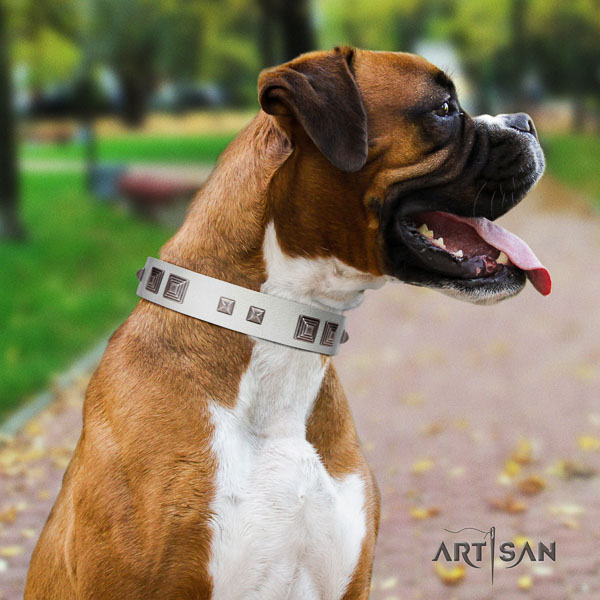 Boxer genuine leather dog collar for walking