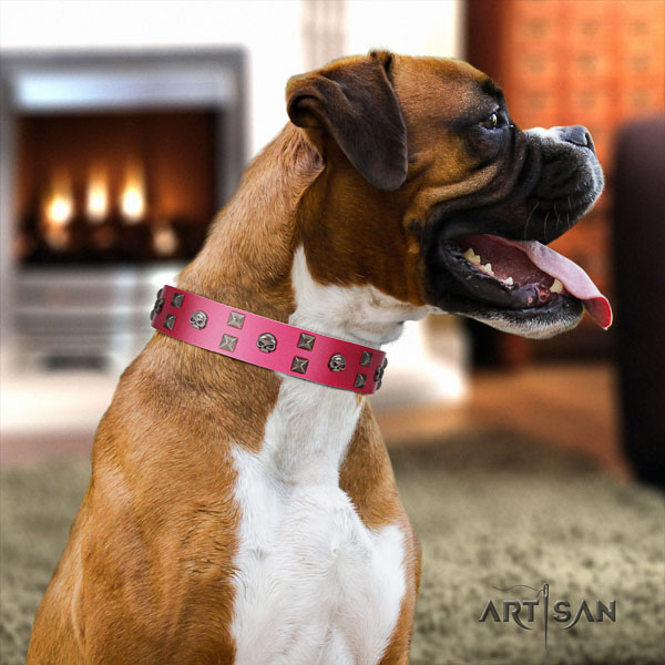 Boxer stylish design full grain leather dog collar with adornments