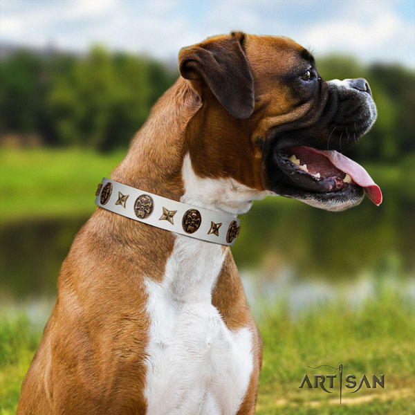 Boxer full grain genuine leather collar with durable D-ring for easy wearing