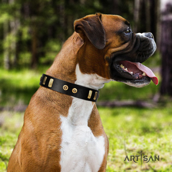 Boxer full grain leather dog collar for fancy walking