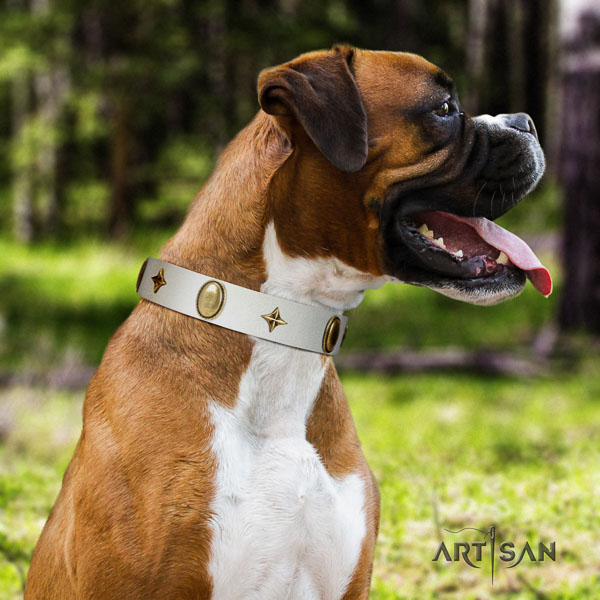 Boxer natural genuine leather dog collar for everyday walking