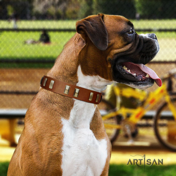 Boxer full grain genuine leather collar with corrosion proof buckle for fancy walking