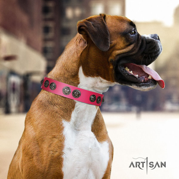 Boxer leather dog collar for daily walking
