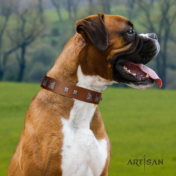 Boxer natural genuine leather dog collar for comfortable wearing