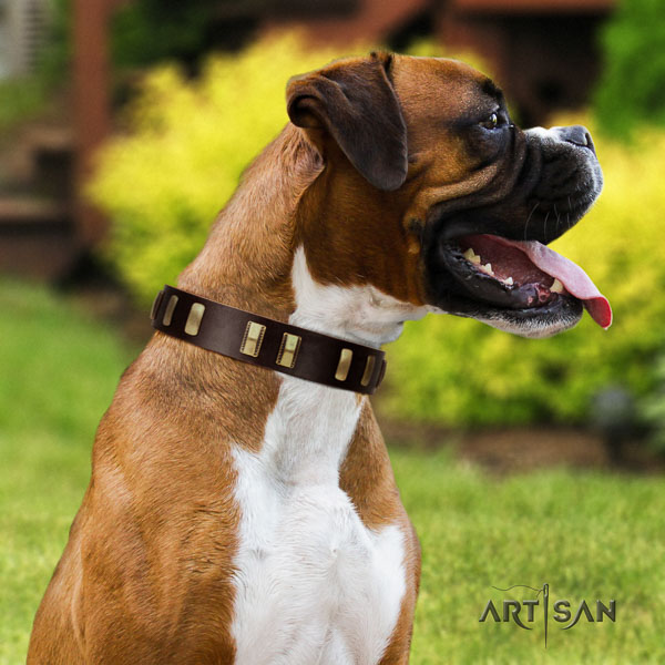 Boxer full grain genuine leather collar with rust resistant buckle for comfy wearing