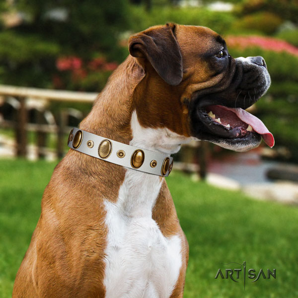 Boxer leather collar with rust-proof D-ring for walking