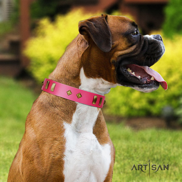 Boxer natural genuine leather collar with rust resistant hardware for fancy walking