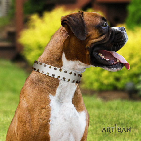 Boxer full grain genuine leather collar with corrosion resistant fittings for comfortable wearing