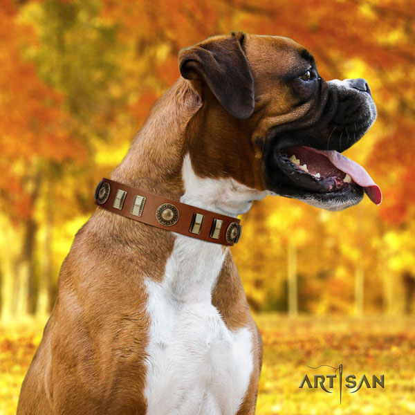Boxer full grain natural leather collar with corrosion resistant D-ring for handy use