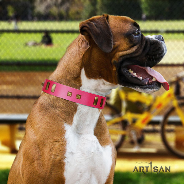 Boxer natural genuine leather collar with rust-proof fittings for stylish walking