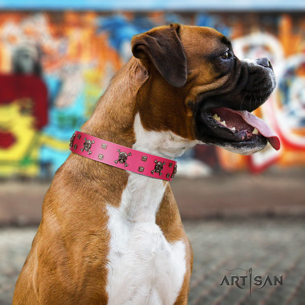 Boxer full grain leather dog collar for everyday walking