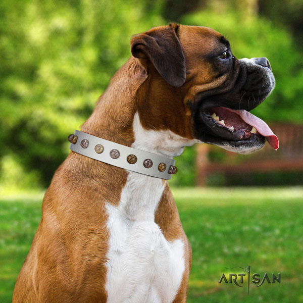 Boxer full grain genuine leather dog collar for basic training
