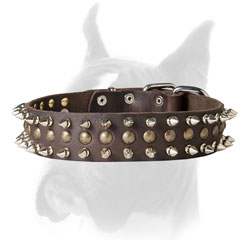 Leather Boxer collar with spikes and studs