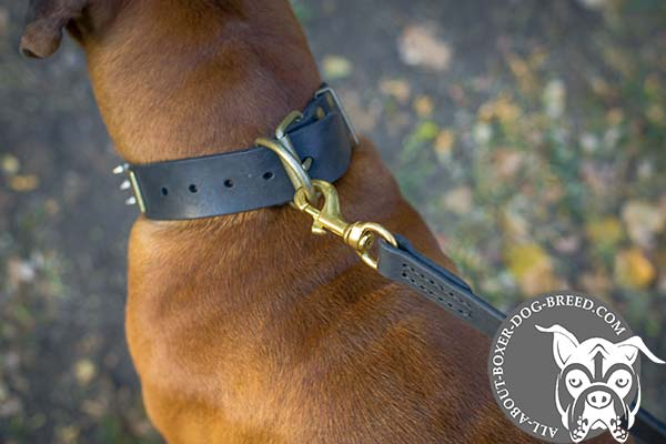 Boxer leather collar of genuine materials with traditional buckle for perfect control