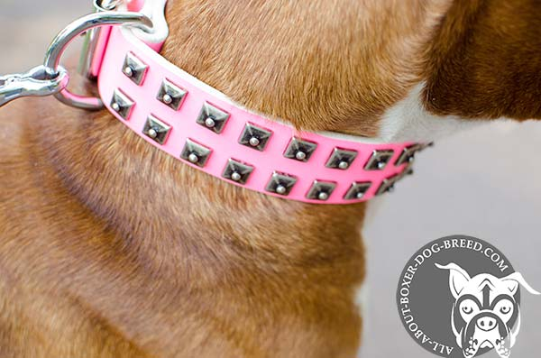 Boxer pink leather collar of high quality with handset studs for walking