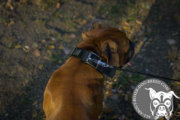 Boxer nylon collar adjustable  with nickel plated fittings for better comfort