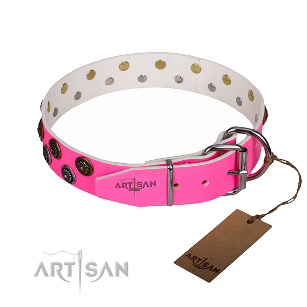 Everyday use leather collar with adornments for your doggie