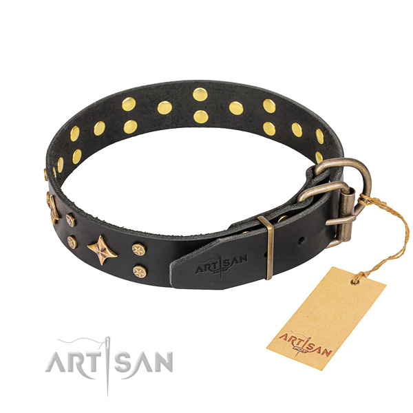 Handy use full grain leather collar with adornments for your four-legged friend